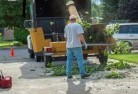 Ajana Tree cutting services 13
